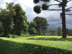 Toward Mt Kenya