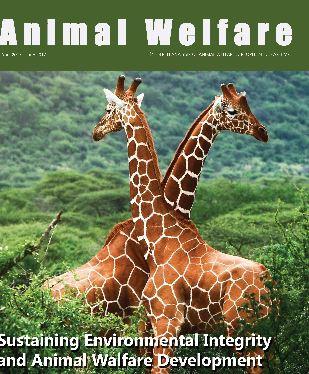 giraffe cover 170713